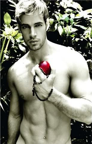 william levy pictures. William Levy: The Great Divide