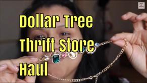 Dollar Tree, Thrift Store Haul